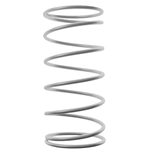 9586 - Outer driven clutch spring